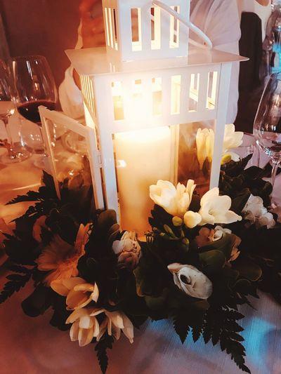 DecI White Flower Love Wedding Flower Flowering Plant Plant Nature Decoration Table Bouquet