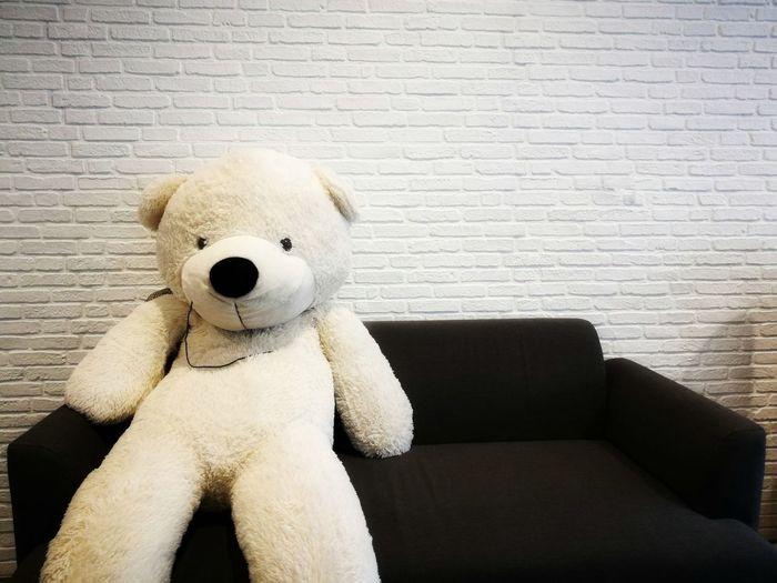 big white bear on black sofa Stuffed Toy Teddy Bear Childhood Cheerful Cute Toy Close-up Bear Toy Animal