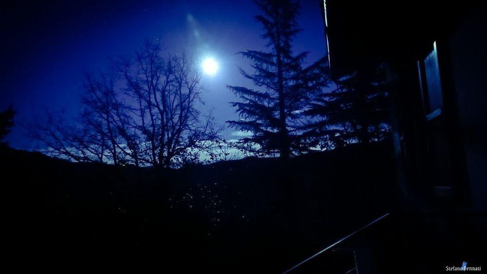 Moon Astronomy Night Star - Space Moonlight Sky Space Illuminated TreeEyeEm Ready   Nature Xzpremium Xperia The Week On EyeEm Italy 🇮🇹