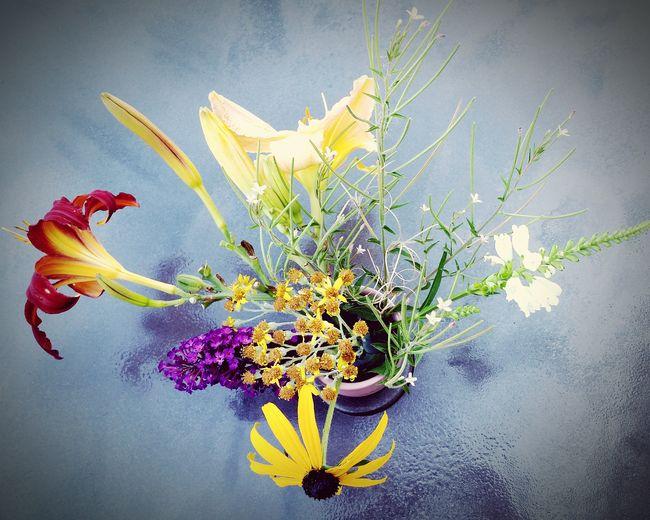My little one made herself a bouquet of fresh cut flowers from our garden. KimberlyJTilley