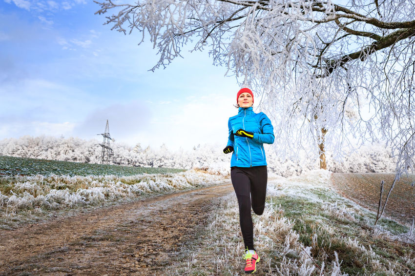 a young woman jogging in the wintry forest Action, Activity, Adult, Competition, Female, Fit, Fitness, Forest, Healthy, Jogging, Lifestyles, Nature, Outdoor, Run, Running, Snow, Sports, Trail, Training, Winter, Wintry, Woman, Woods Day Front View Land Leisure Activity Lifestyles Nature One Person Outdoors Plant Real People Tree Warm Clothing