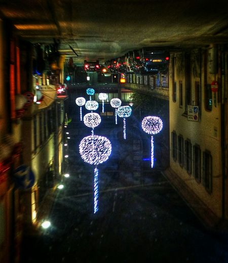 A strange boulevard Sunday_flip Christmas Lights Upsidedownit! Upside Down Photography From My Point Of View