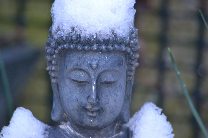Snowy Days... Buddha MyBackGarden