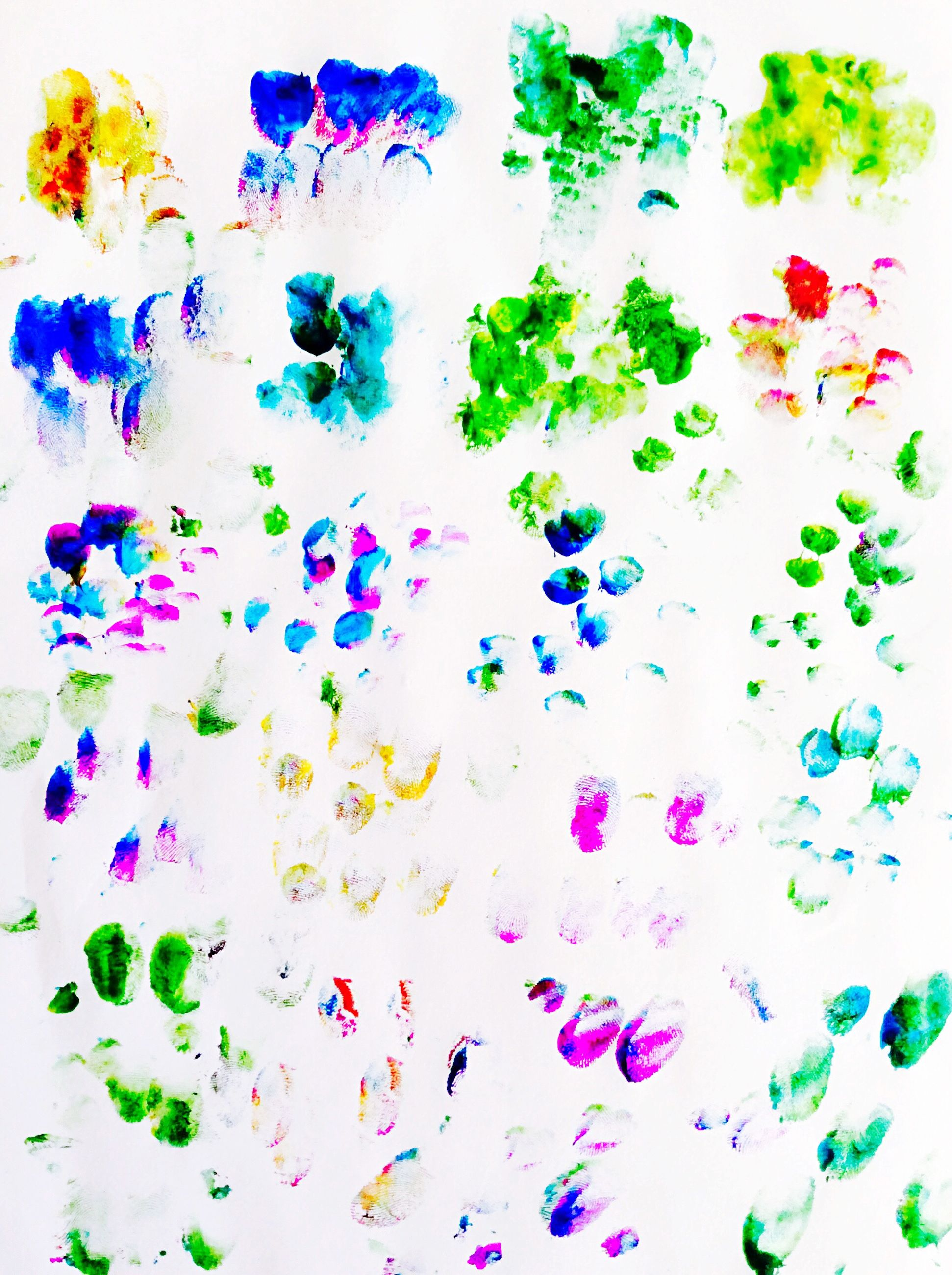 indoors, multi colored, pattern, high angle view, floral pattern, variation, colorful, full frame, still life, backgrounds, design, blue, flower, white background, directly above, close-up, decoration, studio shot, art and craft, table