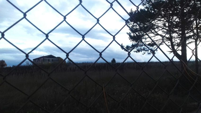 Chainlink Fence Sky Metal Silhouette No People Outdoors Day Nature Close-up City The Week On EyeEm Taking Photos Colors Autumn Hey There :) Beauty In Nature Check This Out Tranquility Live For The Story Cloud - Sky Security Protection Tree Travel Destinations Prison