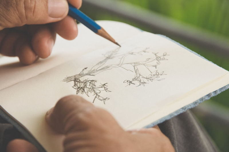 Cropped Image Of Mature Man Drawing On Book