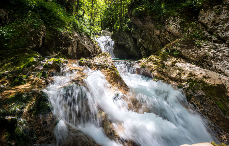 Scenic View Of River Flowing Amidst Rocks In Forest