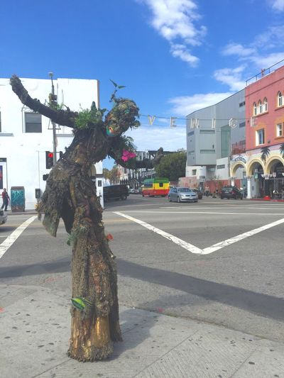 Tree Man Secret