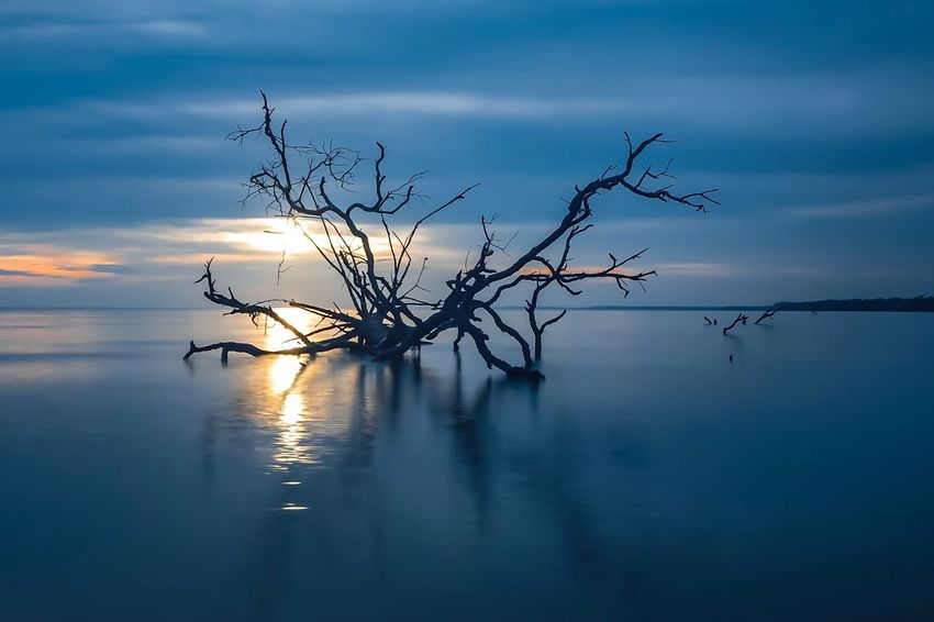 Sky Water Cloud - Sky Beauty In Nature Reflection Waterfront Nature Tree Outdoors Sunset Scenics - Nature