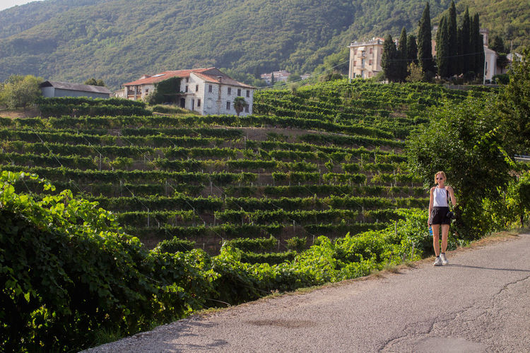 Rural Agriculture Blond Hair Day Enjoying Life Girl Italy Landscape Lone House Mountain Nature One Person One Woman Only Outdoors Prosecco Rural Scene Scenics Summer Valdobbiadene Valley Venice Village Vineyard Winemaking Winery