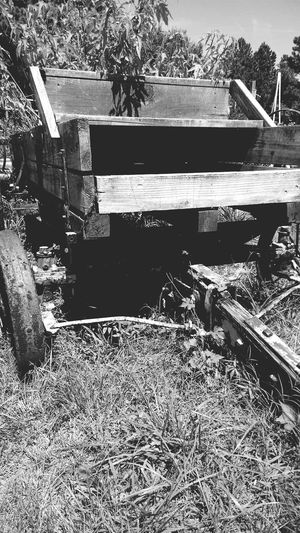 Black & White Eyem Black And White Black And White Collection  Vintage Old Wagon Farm