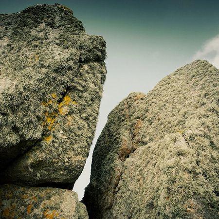 Furry Rocks!!! #lands #ends #cornwall #rocks #lichen Cornwall Lands Ends Lichen Rocks