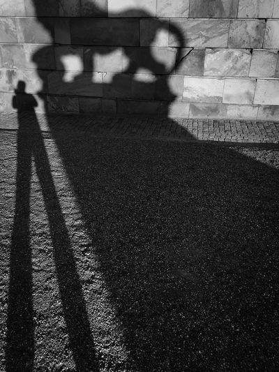 Shadow of people walking on railroad tracks