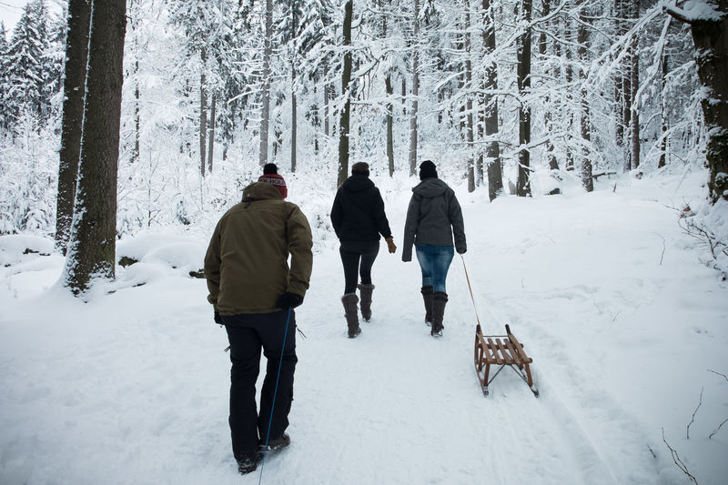 Rear view of people wearing warm clothing walking on snow covered land in forest