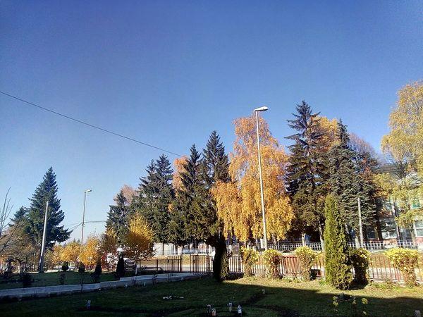 Autumn colors Showcase: November Gacko Autumn Colors Boje Jesen Trees Gacko Bosnia
