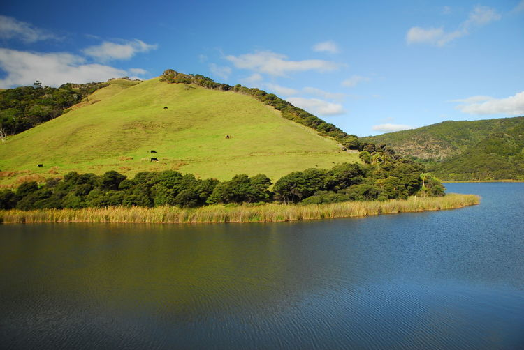 Auckland Lake Long Clouds Lsndscape Nature Photography Outdoors Tourism Traveling New Zealand Nature