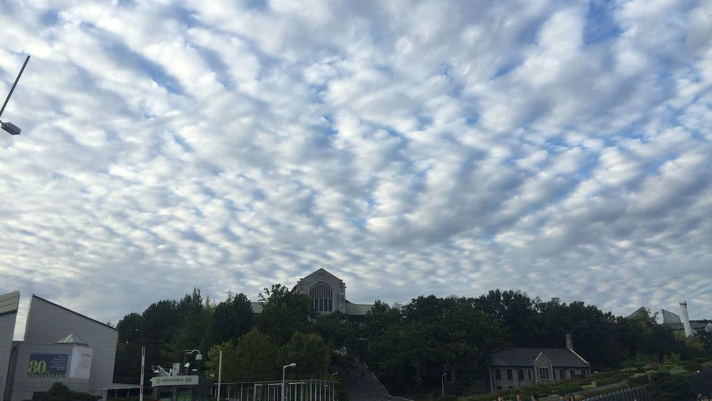 Blanket Made By Clouds in Ewha Womans University