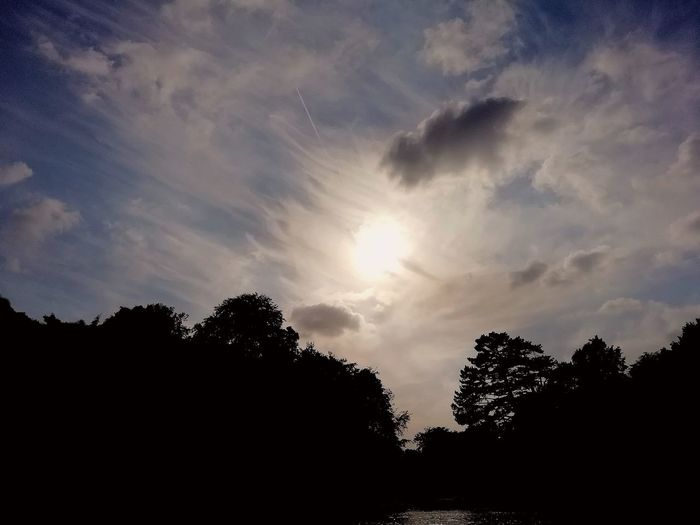 Nature Bois De La Cambre Huwaei Photography Paisible Park Soleil Nuages Tree Astronomy Forest Silhouette Tree Area Sky Sky Only Meteorology Heaven Infinity