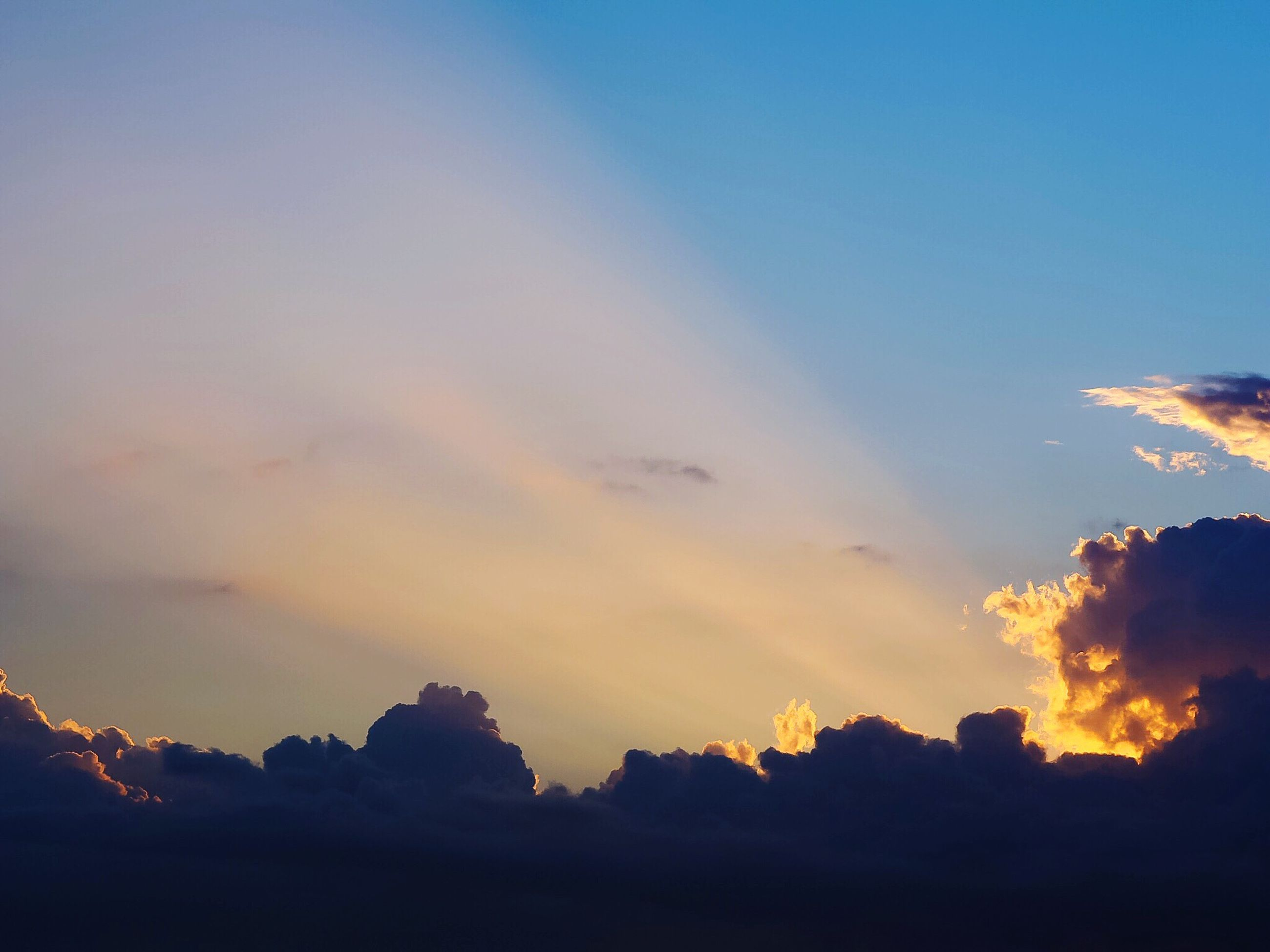 silhouette, sunset, scenics, sky, beauty in nature, tranquil scene, tranquility, tree, nature, idyllic, cloud - sky, low angle view, blue, orange color, cloud, majestic, outdoors, no people, copy space, dusk