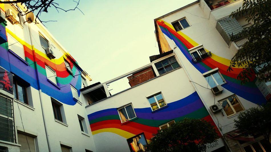 Tirana Random Rainbow Lgbt