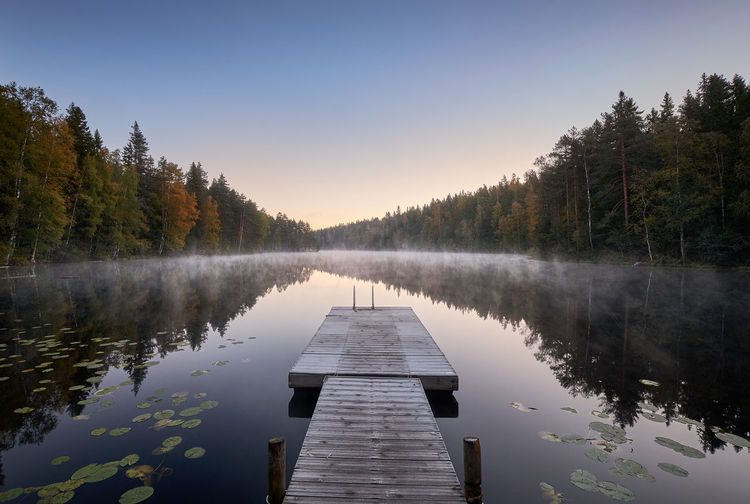 Scenic and idyllic lake landscape with pier and fog at autumn morning in Finland Water Tree Reflection Lake Beauty In Nature Scenics - Nature Tranquil Scene Sky Nature Pier Idyllic Non-urban Scene Wood - Material Tranquility Finland Fog Morning Light Mist Misty Morning Calm Standing Water Autumn Fall Colors Reflection Landscape