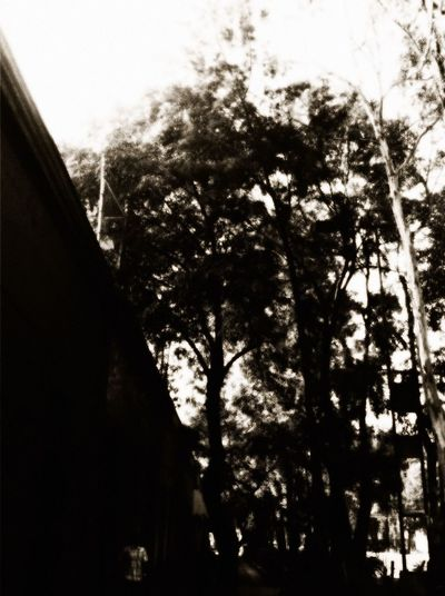 La memoria golpea entre mis dedos... NEM Memories Black & White  Monocrome NEM Black&white
