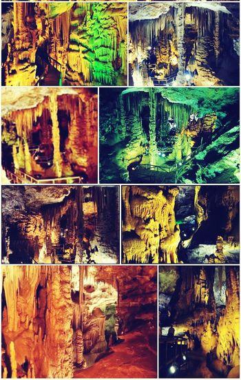 Enjoying Life Relaxing Hugging A Tree Karaca Cave in Gümüşhane