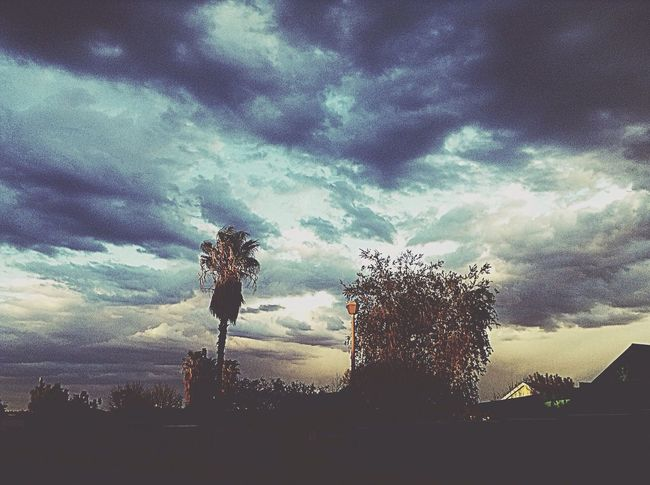Beautiful... Cloud - Sky Nature No People Silhouette Beauty In Nature Shadows Tint Dramatic Sky Palm Tree Beauty In The Madness Windhoek Namibia Scenery Eyeemphotography Life My Unique Style My Point Of View Dream