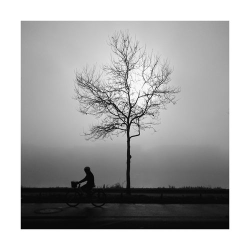 The Street Photographer - 2017 EyeEm Awards One Person Silhouette One Man Only People Day Tree Fog Foggy Morning Mysterious Blackandwhite Street Streetphotography Urbanphotography Outdoors Black And White Shadow And Light Bw_collection BW_photography Bw_lover Bw Walking Around Travel Photography Blackandwhite Photography Just Shoot..