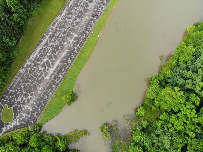 Aerial View Aerial Shot Aeriel Photo Dronephotography Forest Forest Photography Trees Treelines Textured  Textures and Surfaces Texture Green Color DJI X Eyeem Irrigation Equipment Water Rice Paddy Rural Scene Spraying Terraced Field Farmer Agriculture Field Cereal Plant Lush Foliage Greenery Lush - Description Green Woods Grassland Countryside