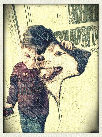 I love taking pics of Seb and his Direwolf. Kids Dogs Husky Seb Samsung Galaxy Note II Anikin