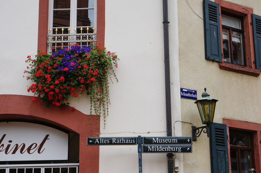The details of life, Miltenberg, Germany Architecture Building Building Exterior Built Structure City Communication Day Flower Germany Guidance Information Information Sign Low Angle View Miltenberg No People Non-western Script Residential Building Residential Structure Sign Text Western Script Window