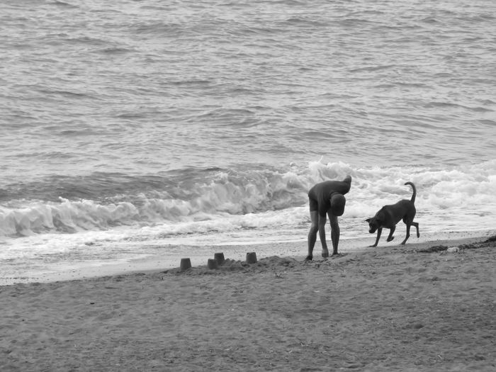 Beach Beach Photography Beauty In Nature Black & White Black And White Coastline Day Domestic Animals Full Length Majestic Nature Non-urban Scene Outdoors Photographic Sequence Of 4 Photos Rippled Sand Scenics Sea Seascape Shore Tranquil Scene Tranquility Water Wave