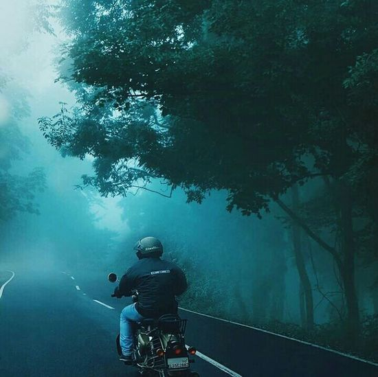 EyeEmNewHere Re Royalenfield Rider Kerala The Gods Own Country ;) Kerala Beuty Keralatourism Canonphotography Nature Fogg Misty Morning Mist Keralaroads Forest Foggykerala EyeEm Selects EyeEm Nature Lover Photography Picoftheday Foggymorning Nature's Green EyeEm Ready