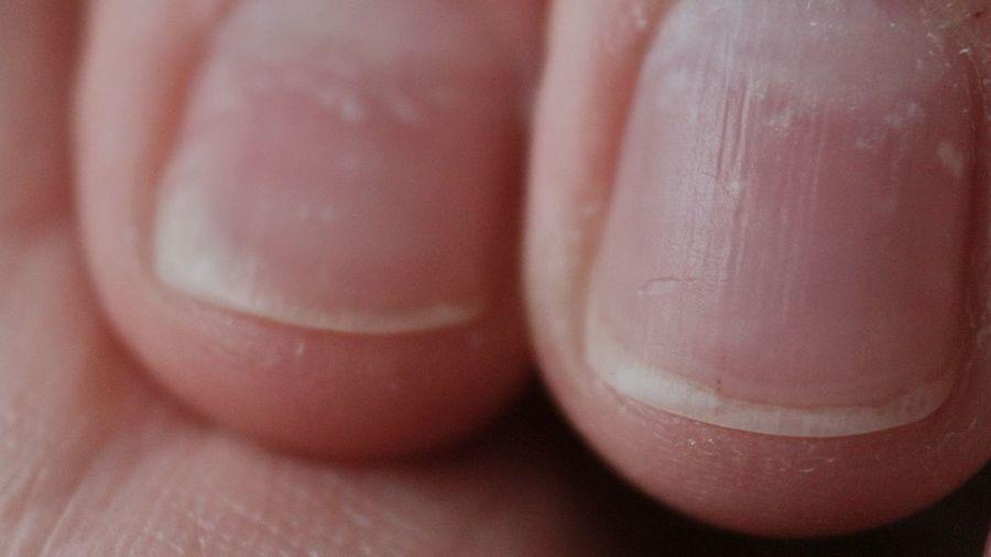 Close-up of human hand