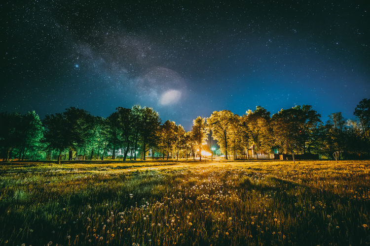 Green Trees Woods In Park Under Night Starry Sky. Night Landscape With Natural Real Glowing Milky Way Stars Over Meadow At Summer Season. View From Eastern Europe At Spring Season. Green Woods Park Night Yellow Sky Landscape Natural Glowing Milkyway Milky Meadow Summer Spring Astronomy Blue Cosmic Forest Stars Shine Tree Universe