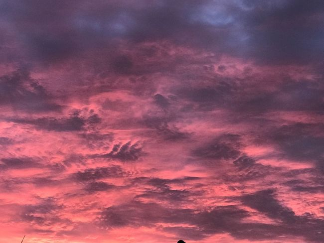 Sunset , no filter , Sunset Nature Beauty In Nature Cloud - Sky Pink Color Outdoors EyeEm Nature Lover Sky Twilight nature is beautiful.