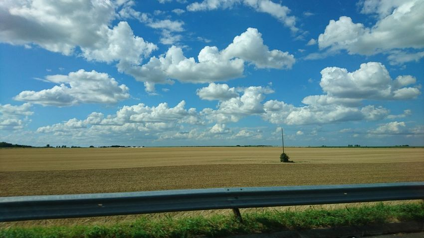On the road in Northern France France Beauty In Nature Cloud - Sky Day Field Grass Horizon Over Land Landscape Nature No People Outdoors Road Trip Roadtrip Scenics Sky Tranquil Scene Tranquility Tree