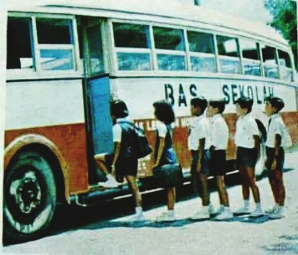 Transportation Outdoors Bus Day Mode Of Transport Land Vehicle School School Buses