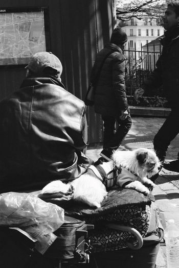 Tired Walking Around Streetphoto_bw Filmcamera Paris People Watching Blackandwhite People Streetphotography Monocrhome