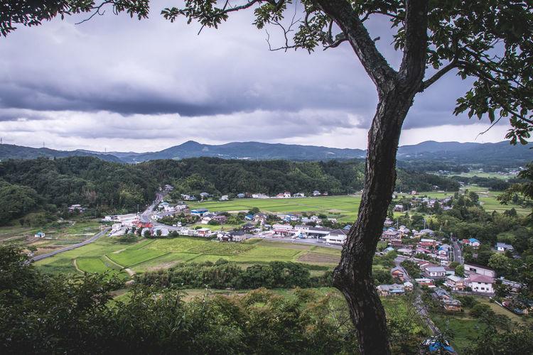 High Angle View Of Farms And Houses