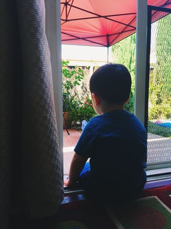 Saturday Curiosity Sitting Day Cute Two Years Old Quiet Moments Peace Backyard Babyboy