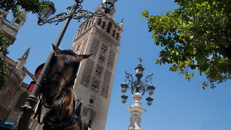 Giralda Giralda Tower Hey✌ Sevilla Architecture Art And Craft Blue Building Exterior Built Structure Clear Sky Cross Day Hey You History Human Representation Low Angle View No People Outdoors Place Of Worship Religion Sculpture Sky Spirituality Statue Tree