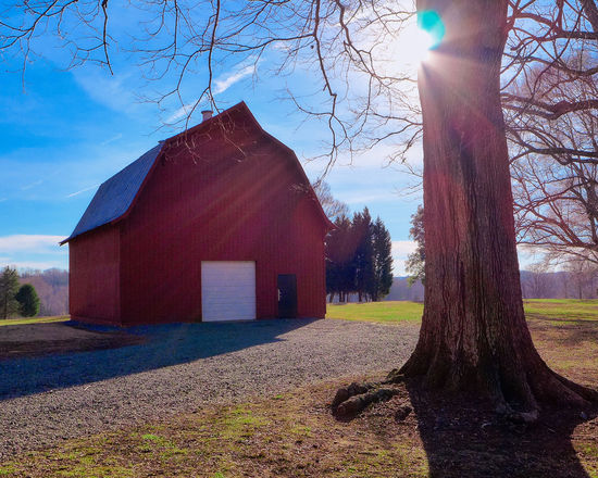 """""""Happy Day"""" a glorious morn at the barn. Barn Check This Out Countryside Day Deceptively Simple Enjoying Life EyeEm Best Shots EyeEmBestPics Fresh Freshness From My Point Of View Good Morning Light And Shadow Nature No People Outdoors Rural Scenes Scenics Sky Sunrise Sunrise Silhouette Tranquility"""