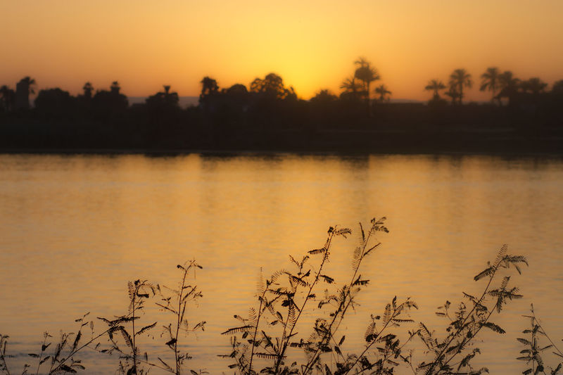 The Nile River Nile River Egypt River River View Sunset Colors Riverscape