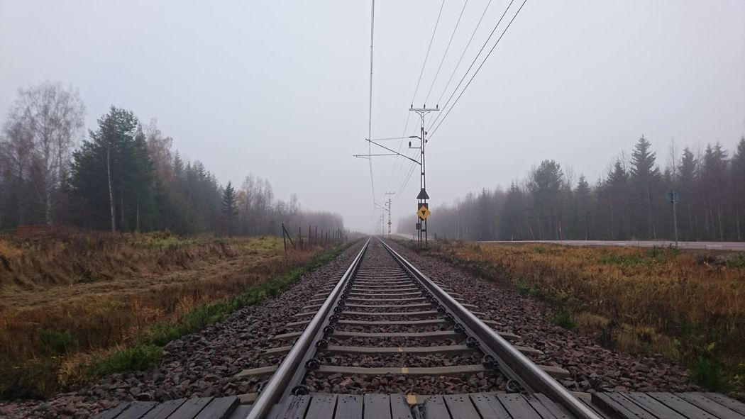 Electricity  Manmade Structure Technology Economy CarbonNeutral Ecofriendly Tree Rail Transportation Railroad Track Transportation The Way Forward Nature Social Issues No People Outdoors Day Autumn October Norrland Middle Of Sweden Fog Sverige Mist Pathway Foggy Train - Vehicle Empty Road Weather Treelined Railway Signal
