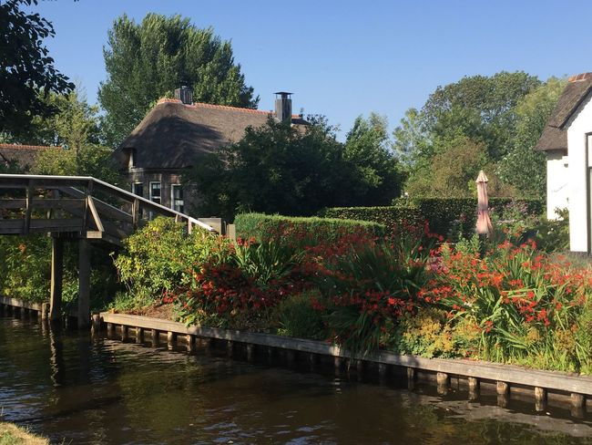 Giethoorn Hollande Plant Water Built Structure Architecture Nature Building Exterior Tree