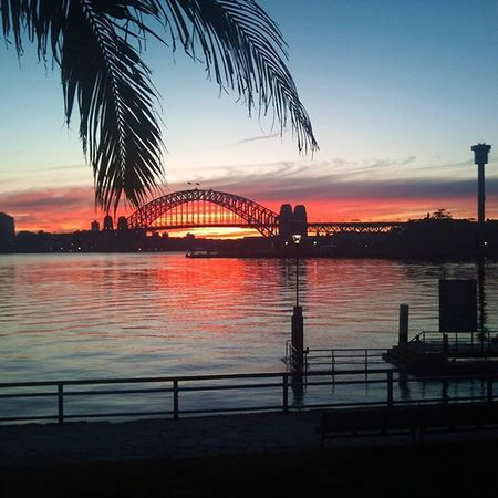 Sydney Harbour Bridge at Sunrise Visitnsw Visitaustralia Visitsydney Sunrise Focusaustralia