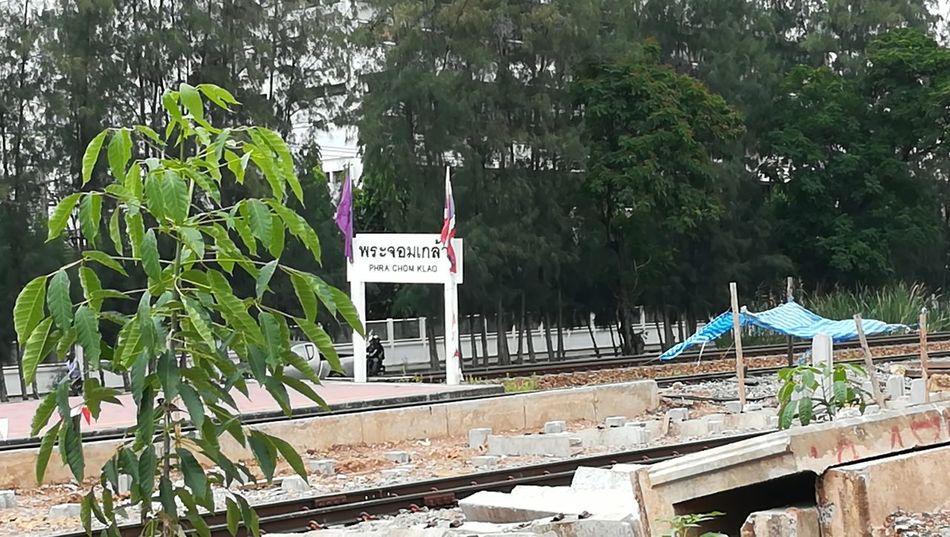 สถานีรถไฟพระจอมเกล้า Tree Water Communication Text