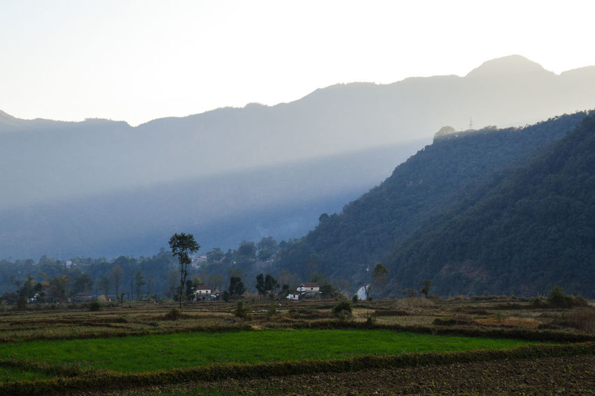 Mountain Tree Landscape Mountain Range Nature Agriculture Beauty In Nature Water No People Outdoors Sky Day Light And Shadow Pokhara, Nepal Travel Photography Tourism Nepal Travel Fog Early Morning Sky